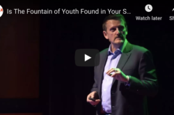 Is The Fountain of Youth Found in Your Stem Cells?